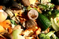 foodwaste-istock