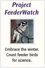feederwatchbutton