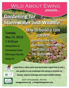 Gardening for Stormwater and Wildlife: how to build  a rain garden